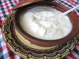 yogurt bulgaro